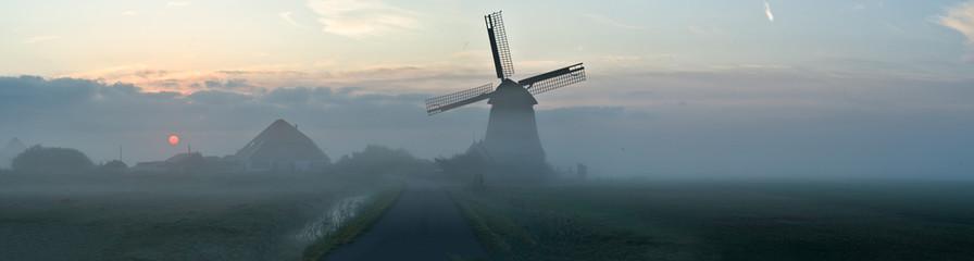 ミドリムシの歴史に迫る!発見はオランダ出身のアントニ・ファン・レーウェンフック