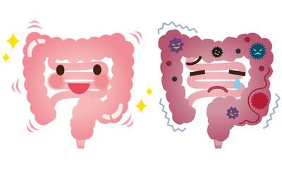 腸内環境は「善玉菌」と「悪玉菌」のバランスによって左右されています