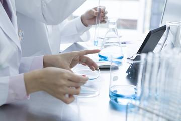 パラミロンは2017年現在も研究が進められている物質です。