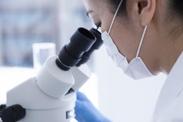 リジューナを美容成分として活用できるようになったのは、ミドリムシの大量培養に成功したため。 2017年現在では、すでに複数の企業がリジューナの活用について研究を進めています。